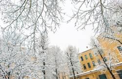 Winter im Winter in der Stadt