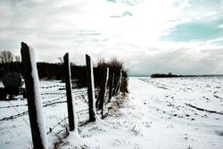 Winterimpression_III