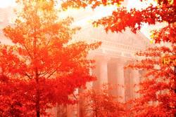 ...berlin autumn