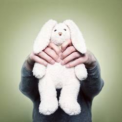 Who killed the rabbit?