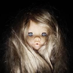 wild puppet