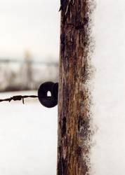verschneiter Zaunpfosten
