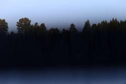 Blauer See mit Wald