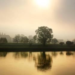 Guten Morgen Elbe