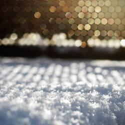 Beautiful World - Winterspaziergang