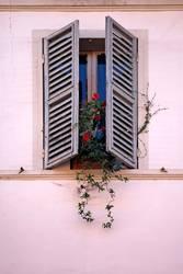 finestra VI