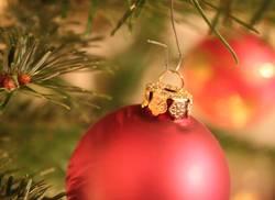 Auf ein gemütliches Weihnachtsfest...