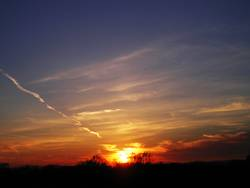 Donauinsel Sonnenuntergang