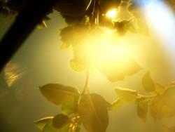 Explosion der Sonnenstrahlen