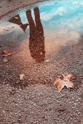 Reflection in a puddle of a woman with her dog