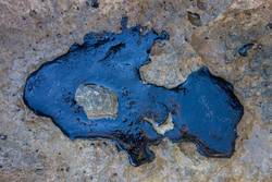 Crude oil spill on a rock from the beach