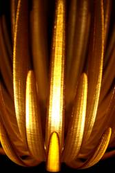 Lichtausschnitt