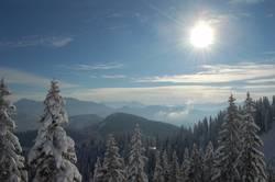 Wintersonnentag