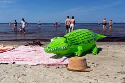 Green crocodile on the beach in Jurmala
