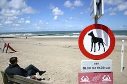 Doggies verboten