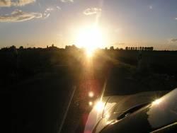mit Alfa der Sonne entgegen