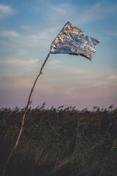 Golden flag reflecting