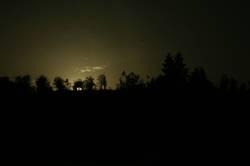 moonlight shaddow