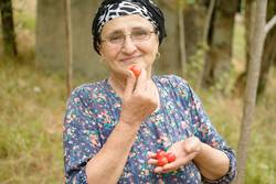 Happy senior woman holding red plums in hand