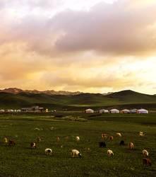 A small mongolian yurt camp at sunset