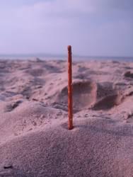 Salzstange am Strand
