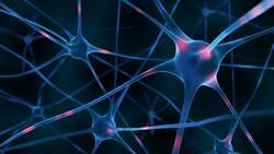 Aktive Nervenzellen (3D Render)