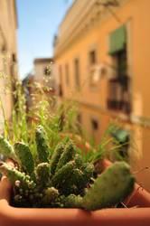 México in Barcelona - kleine Sonnengötter