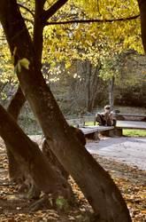 Northhampton Park